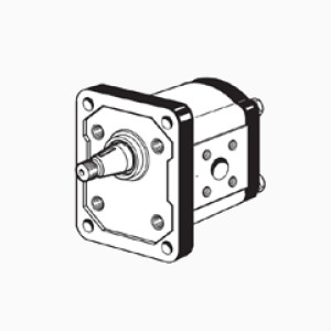 1TM FB - Gear pumps group 1