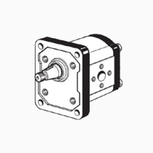 1TM FP - Gear pumps group 1